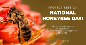 Tell Congress to Support the Saving America's Pollinators Act!